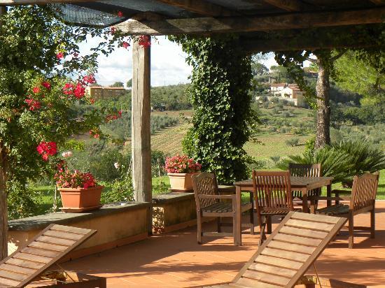 Tenuta Santa Cristina: The view from the pation!