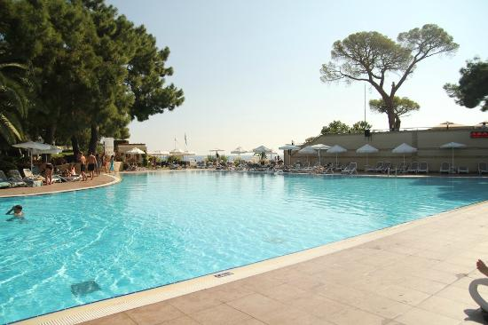 Euphoria Tekirova Hotel: pool