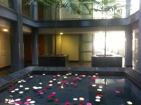 Marina Suites: Hotel flower pool... Beautiful fresh gerbera flowers gently floating in the water jets