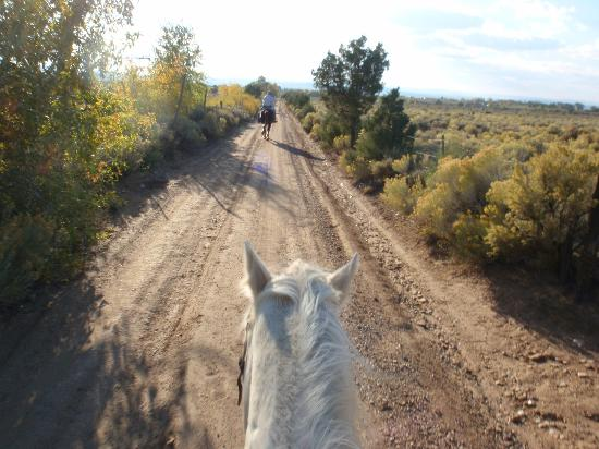 Arroyo Seco, NM: Most of the ride on trails, small time on this road
