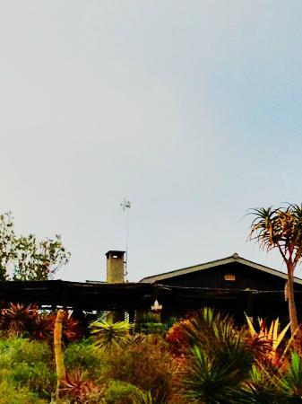 Mudlark River Front Lodge: the Lodge