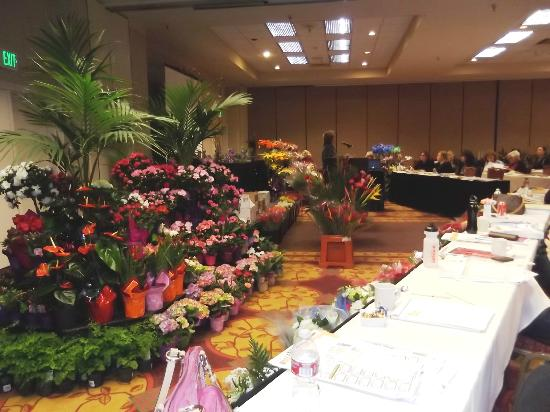 DoubleTree Suites by Hilton Hotel Seattle Airport - Southcenter: The Grand Ballroom where we have our show every year