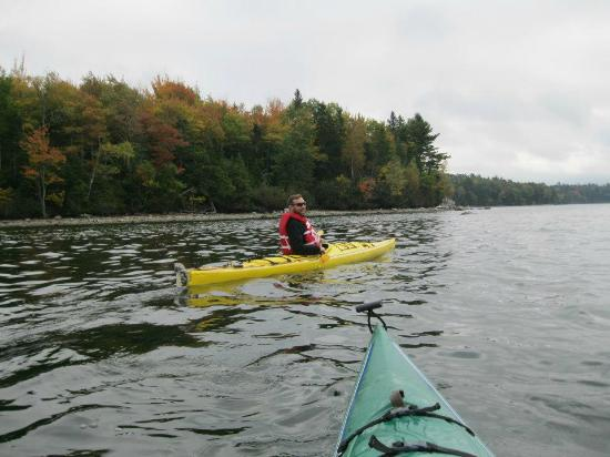 Windward Cottages: Kayaks and canoes are available for your use... free! Kayaks, PFDs, and paddles in good conditi