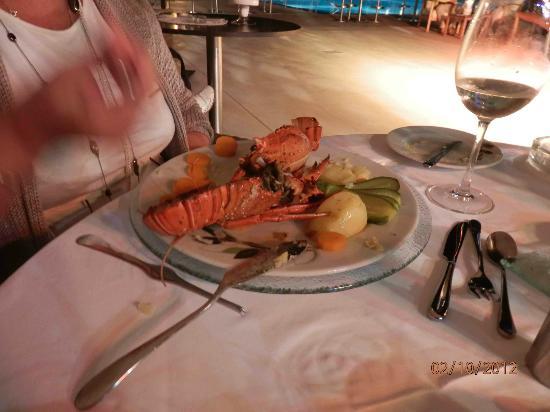 Albatros Spa & Resort Hotel: Lobster night