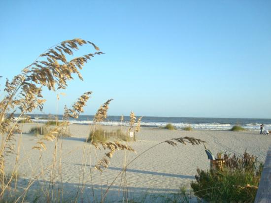 Wild Dunes Resort: The Wild Dunes Beach