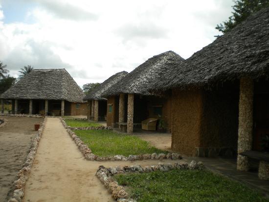 Tishi's Farm : Vista degli alloggi