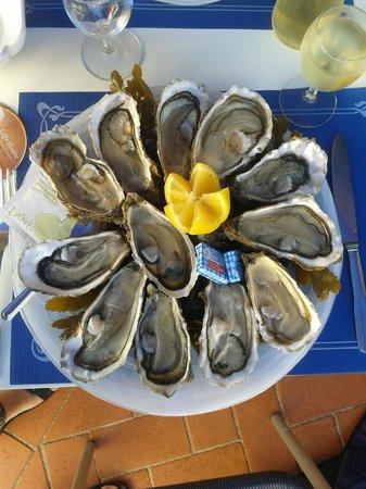 La Station : My oysters