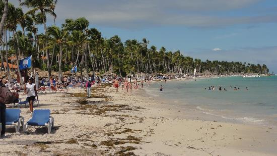 Natura Park Beach - EcoResort & Spa: praia