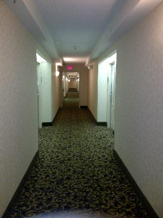 Homewood Suites Orlando-International Drive/Convention Center: PASILLO PISO 5