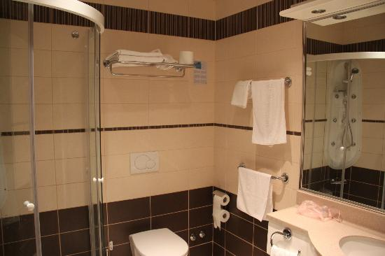 Hotel Croatia : bathroom