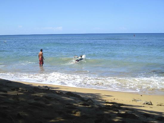 Surf 787 Guest Villa: Nego sending me out