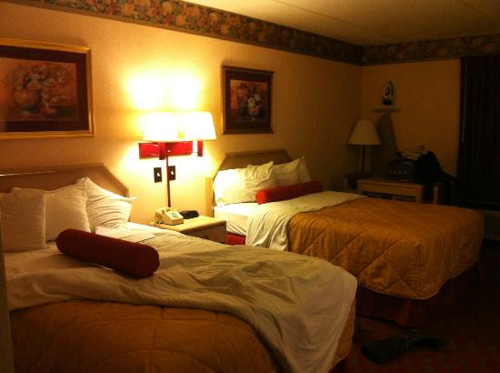 Ramada Murfreesboro: ready for bed and NO bed bugs