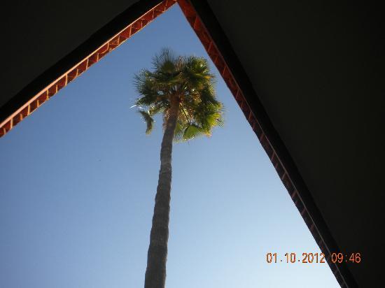 Hotel Cecil Marrakech: Innenhof