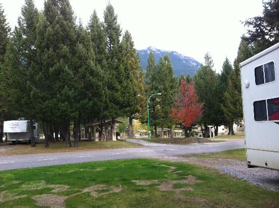 Radium Valley Vacation Resort : The campsite grounds