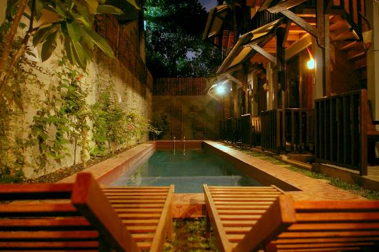 Venezia Garden: The pool!