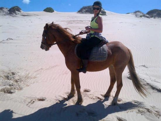Oyster Bay Lodge: Horse riding on the beach