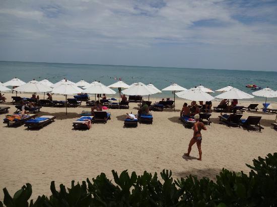 Thai House Beach Resort: strand