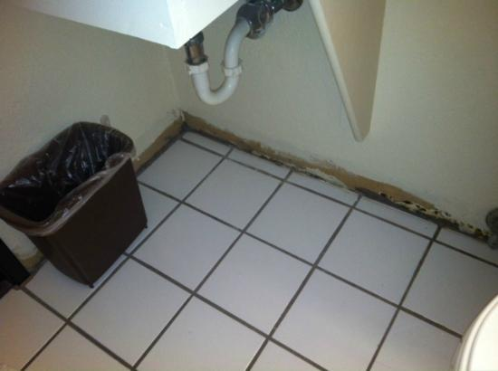 Super 8 Cheyenne WY: Baseboard under the sink