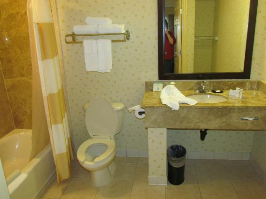 SpringHill Suites Victorville Hesperia: Bathroom
