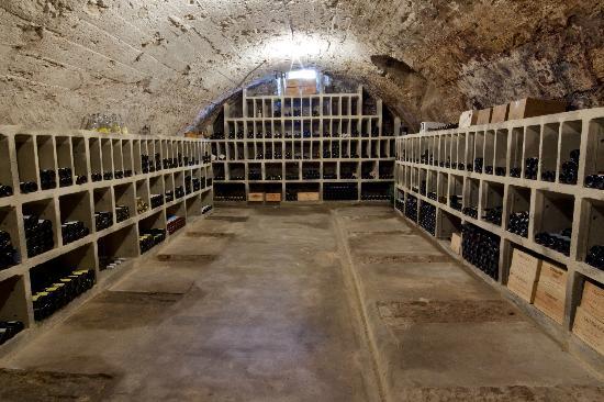 Zum Gruenen Wald: Unser Weingewölbe aus dem 14 Jahrhundert