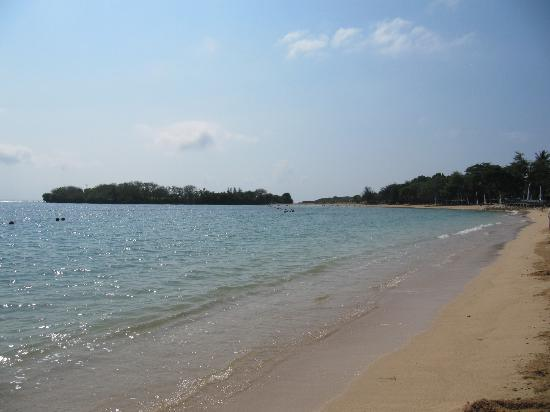 The Laguna, a Luxury Collection Resort & Spa: Beach