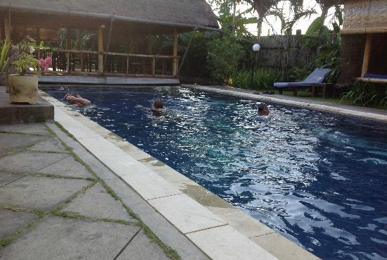 Senyum Villas: pool