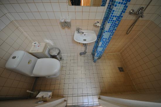 Hotel Viking: Туалет