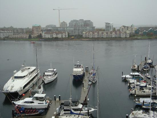 Coast Victoria Harbourside Hotel & Marina: View from balcony in room