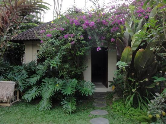 Villa Gaia : Our garden suite