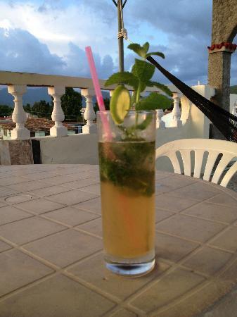 Hostel Noel y Nury : Noel's famous mojito up on the terrace