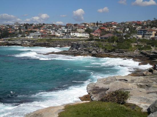 Bondi to Coogee Beach Coastal Walk : The Bondi to Coogee walk
