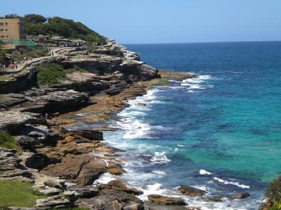 Bondi To Coogee Beach Coastal Walk The Bondi To Coogee Walk
