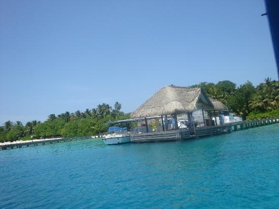Kuramathi Island Resort : arriving