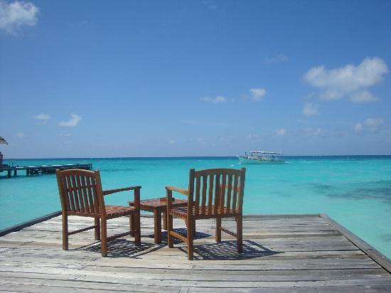 Kuramathi Island Resort: deck by bar