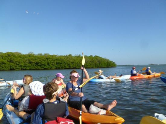 Kayak SW Florida - Day Tours