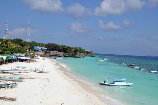 Anda Bungalows : Beach