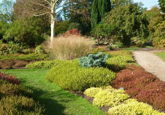 Nymans Gardens and House: heather garden