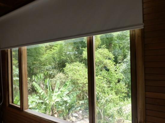 Dragonfly Inn B&B: Garden View