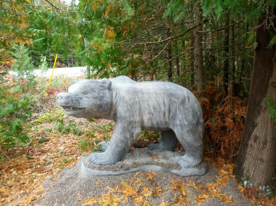 Bear Cove Bed and Breakfast: A giant bear! I kid you not!