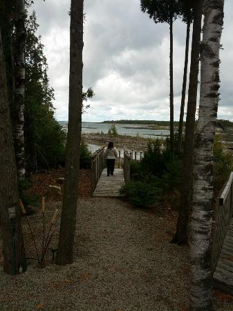 Bear Cove Bed and Breakfast: Overcast and yet still outstanding views