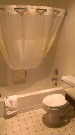 Americas Best Value Inn: Bathroom