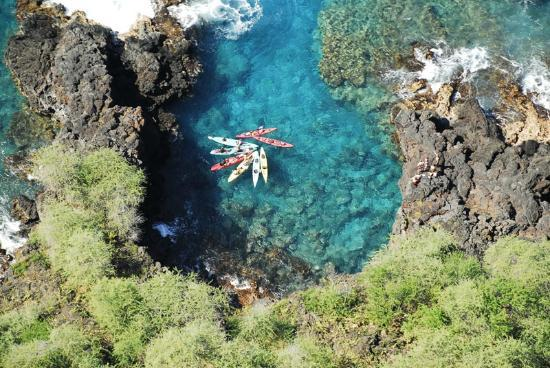 Ocean Safaris Kayak Adventures: A Snorkel Spot