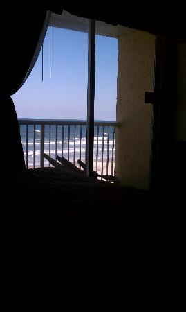 Best Western Daytona Inn Seabreeze: view from rm 430