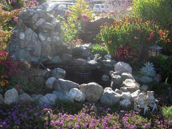 Surf Motel and Gardens: Garden