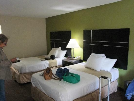 Days Inn Oil City Conference Center: Our lovely non-smoking double room, fridge, microwave, VIEWS