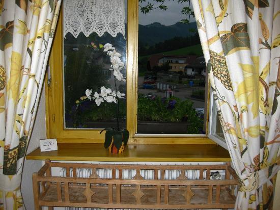 Schwarzwaldgasthof Zum Goldenen Adler: Farmer's Room #14 - Window