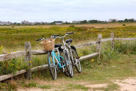 Anchor Inn: Our bike ride