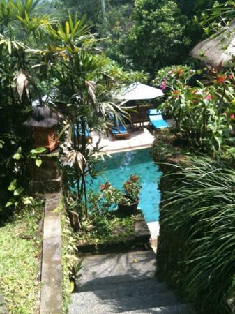 Alam Indah: vue sur la piscine