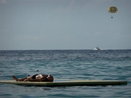 Bananarama Beach and Dive Resort: Love the swim dock