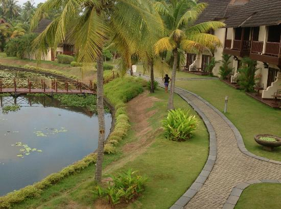 The Zuri Kumarakom: view from the room